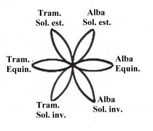 Fiore vita ciclo sole