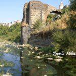 Ruderi del Ponte Nuovo